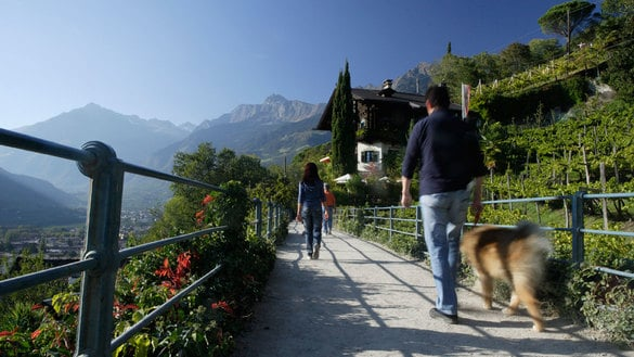The Tappeinerweg Trail in Merano